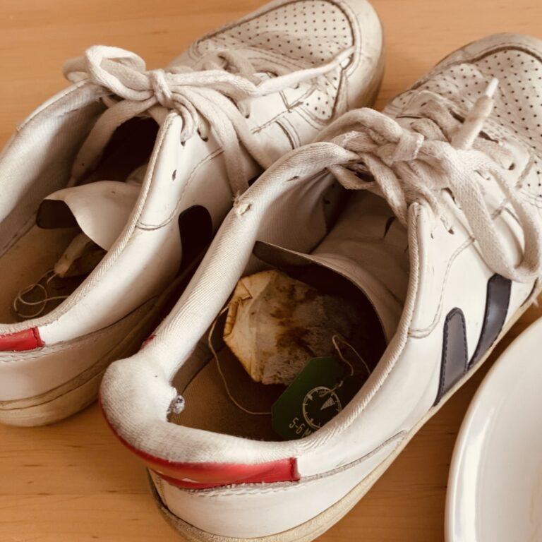 Schuhe entmüffeln